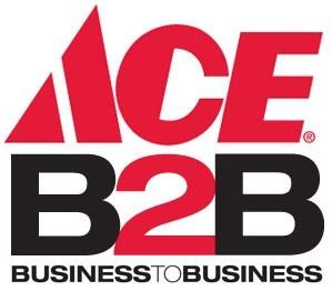 Ace B2B